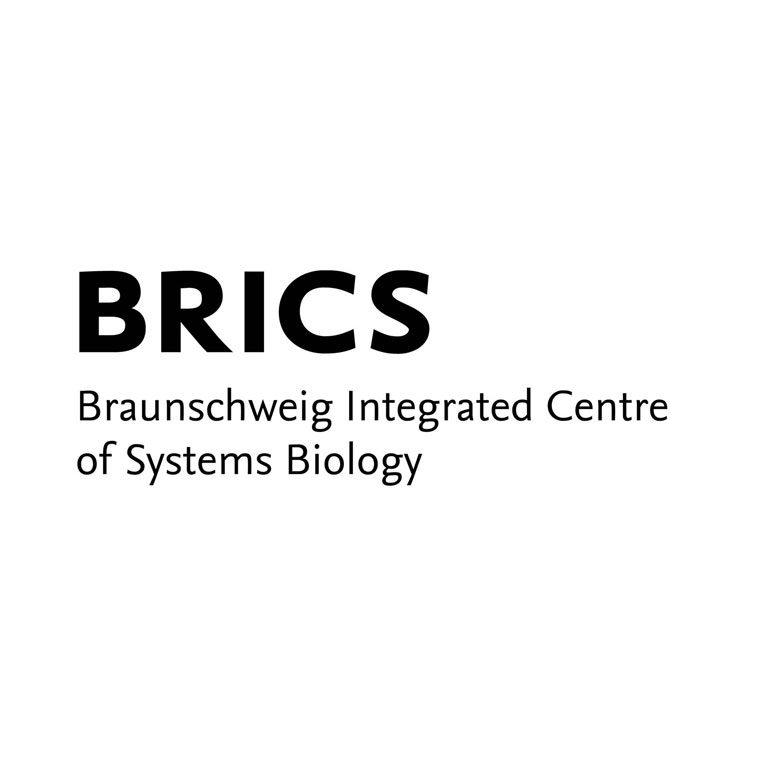 refrenzen_brics